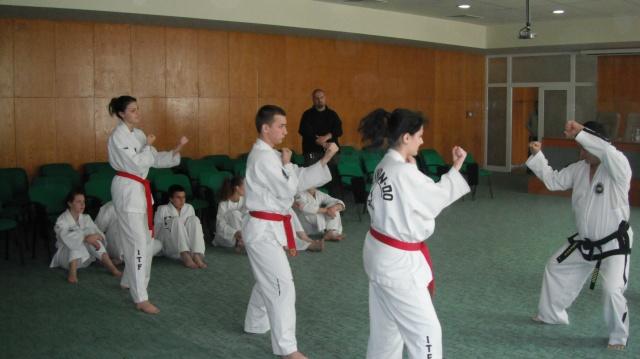 first level taekwondo techniques pdf