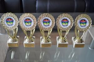 Награди за принос, 2015