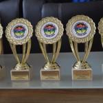 награди за принос 2015