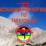 ТК Феникс въвежда дистанционно обучение по таекуон-до